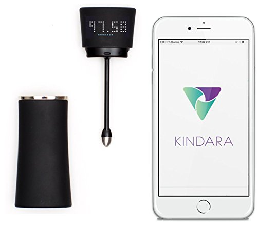 kindara wink fertility thermometer app