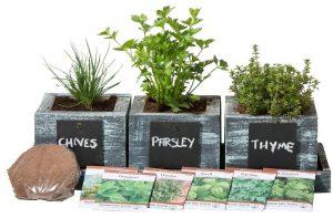 herb garden planter pro
