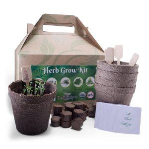 organic 5 herb planting kit