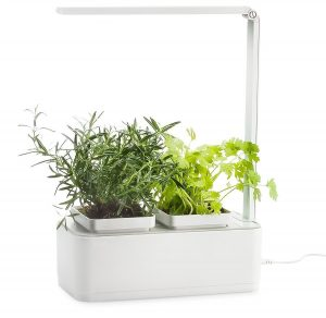 Irse Indoor Garden Kit Hydroponics Led Growing System Link