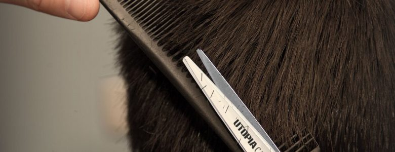 Best Japanese hair shears